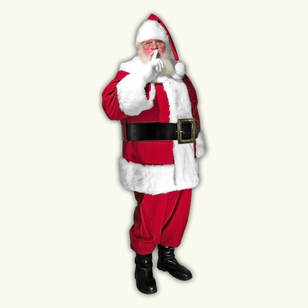 (D) Mall Professional Santa Claus Suit